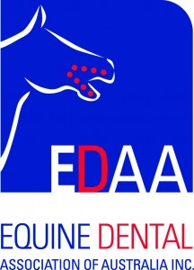 Equine Dental Association of Australia Course | Jenavive